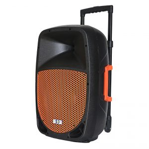 black_orange_SD12M_250w_PA_system